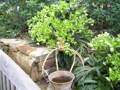 Cottage and garden 079