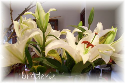 Brigitte 012