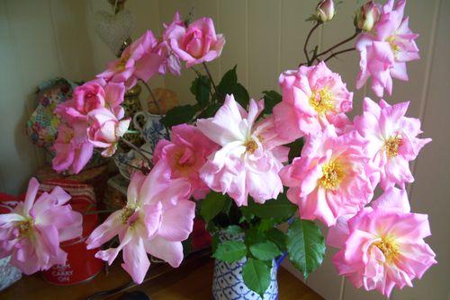 Roses 2 011
